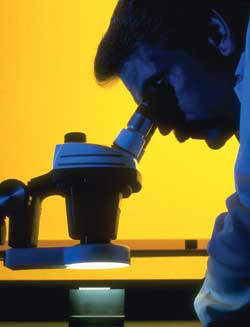 Oil analysis lab technician looking at an oil sample through a microscope.